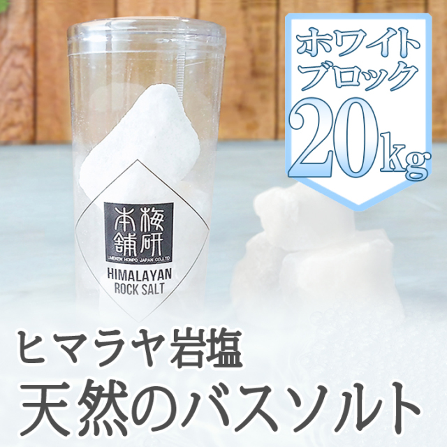 【ポイント10倍】【バスソルト】 ヒマラヤ岩塩 ホワイト ブロック 20kg