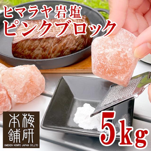 【ポイント10倍】【食用】 ヒマラヤ岩塩 ピンク ブロック 5kg【1~10センチ前後】