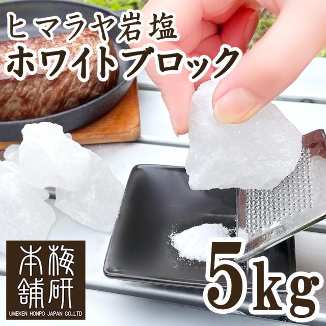 【食用】 ヒマラヤ岩塩 ホワイト ブロック 5kg