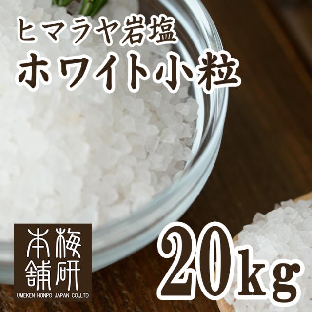 【ポイント10倍】【食用】 ヒマラヤ岩塩 ホワイト 小粒 20kg