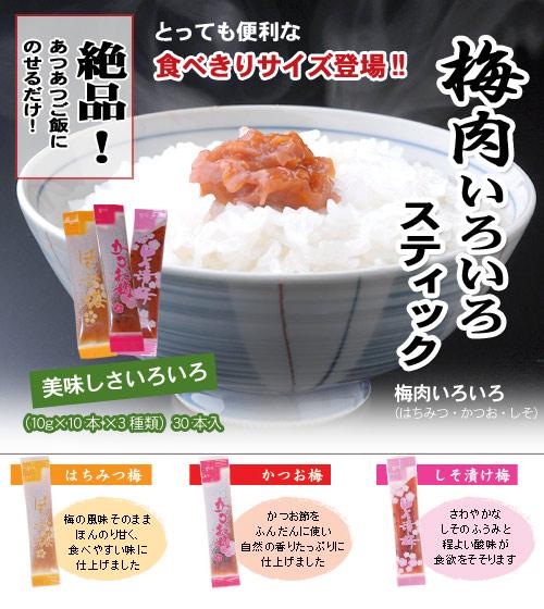 梅肉いろいろスティック 10g×10本×3種類