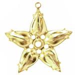 10×6 ペアマルチセッティング 星 金