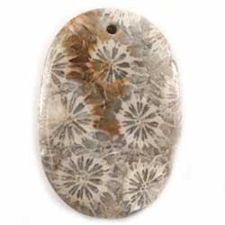34×23.3 オーバル 菊目石 1穴