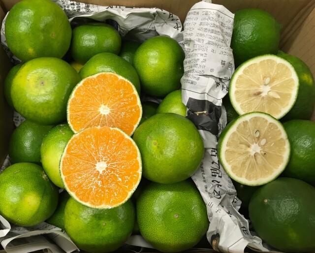 グリーン×グリーンなセット!?お得な極早生みかん2kgとグリーンレモン1kgセット○送料別○