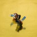 花魁 ハロゲンバルブ 閃光 H11 5500K 24V用 白龍 OKH12-H11-55