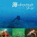『海のトワイライトゾーン』(サウンドトラックCD)黒石ひとみ