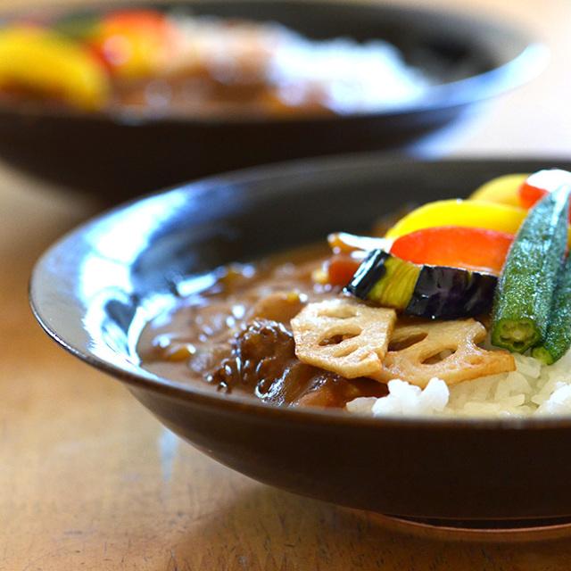和食器 お試しセット 天目釉カレー皿セット(2客組) 作家「多屋嘉朗」
