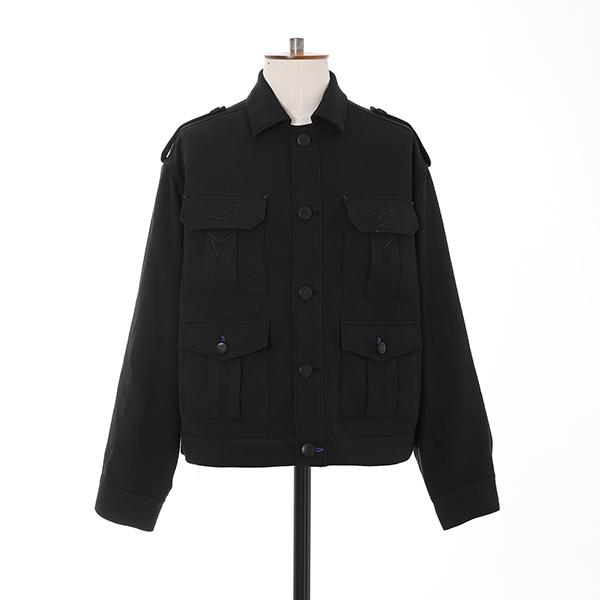 ファイアーエムブレム 風花雪月 青獅子の学級 モデル ジャケット