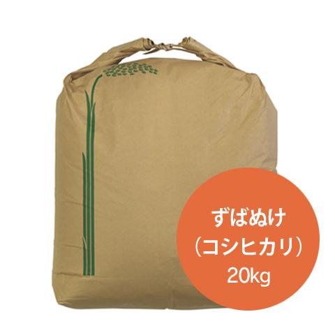 ずばぬけ コシヒカリ(特別栽培米) 玄米20kg