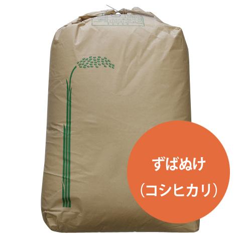 ずばぬけ コシヒカリ(特別栽培米) 玄米30kg