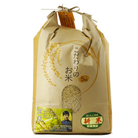 【新米キャンペーン】令和元年度産コシヒカリ玄米(無農薬)5Kg+野菜とグルテンミートのカレー3個