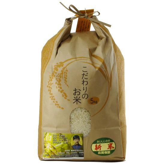 【新米キャンペーン】令和元年度産コシヒカリ白米(無農薬)5Kg+野菜とグルテンミートのカレー3個