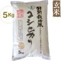 中村さんのJAS有機特別栽培玄米・5kg(22年度米)