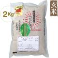 反町敏彦さんの栽培期間中農薬・化学肥料を使わない純血コシヒカリ玄米・2kg(24年度新米)
