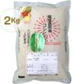 反町敏彦さんの栽培期間中農薬・化学肥料を使わない純血コシヒカリ精米・2kg(24年度新米)