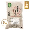 反町敏彦さんの栽培期間中農薬・化学肥料を使わない純血コシヒカリ玄米・5kg