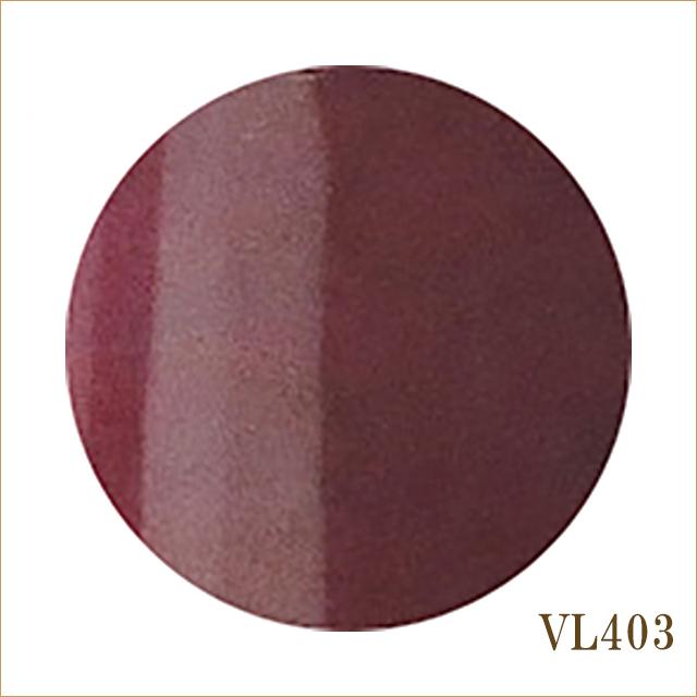VL403 レヴェル