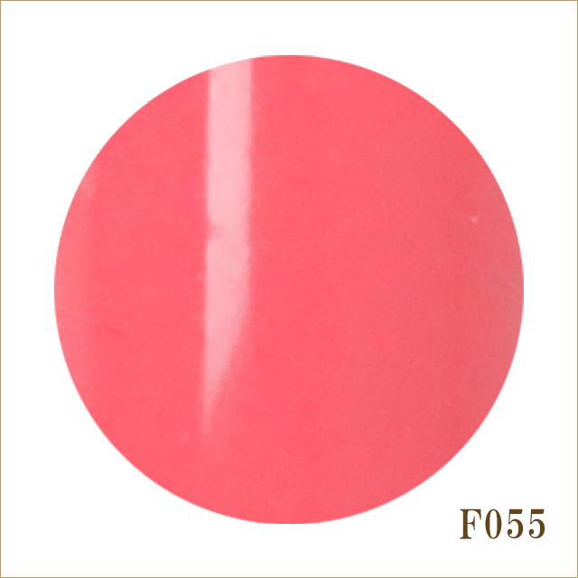 F055 カーネーション