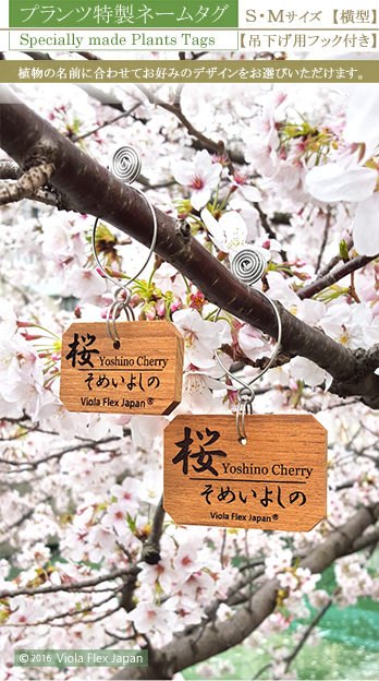 《 植物・樹木の名札 》プランツ特製ネームタグ 横型  【 吊下げ用フック付き 】 チーク製