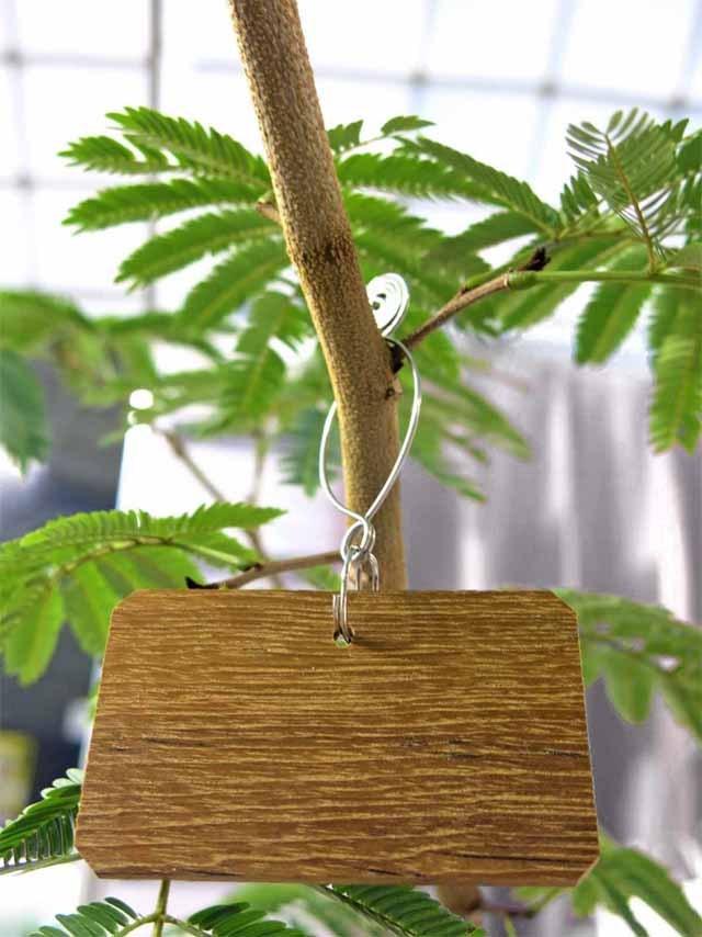 カメレオンのしっぽ特製ネームタグ 横型5-7.5cm*Mフック  (1個入) シルバー