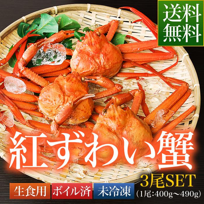 送料無料 鳥取県 境港産 ボイル 紅ずわい蟹 A級 3尾SET(1尾400~490g)【紅ずわい400A3尾】