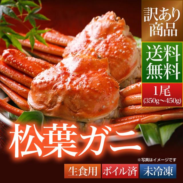 送料無料 訳あり 鳥取県 境港産 ボイル 松葉カニ 蟹 1尾(350g~450g)【松葉ガニ350W1尾】