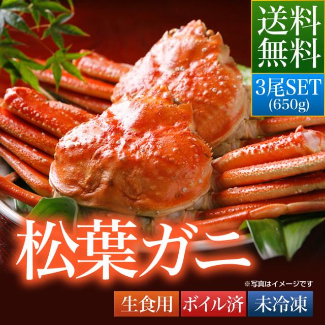 送料無料 鳥取県 境港産 ボイル 松葉カニ 蟹 A級 650g×3尾SET【松葉ガニ650A3セット】