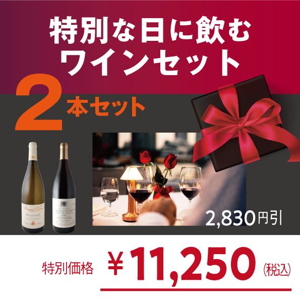 ヴィノテラス厳選!特別な日に飲むワインセット【2本セット:白1/赤1】