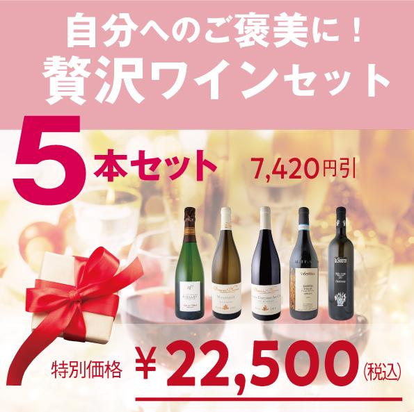 日頃の感謝を込めた限界ギリギリ価格ワインセット【5本セット:泡1/白2/赤2】