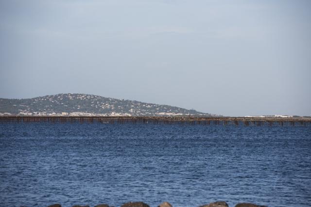 トー湖にある牡蠣の養殖棚
