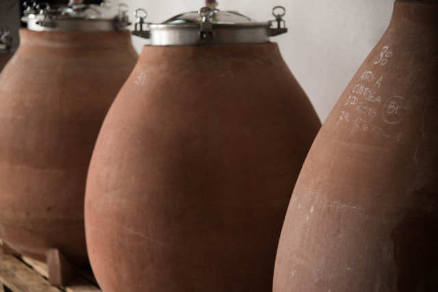 アンフォラの発酵槽