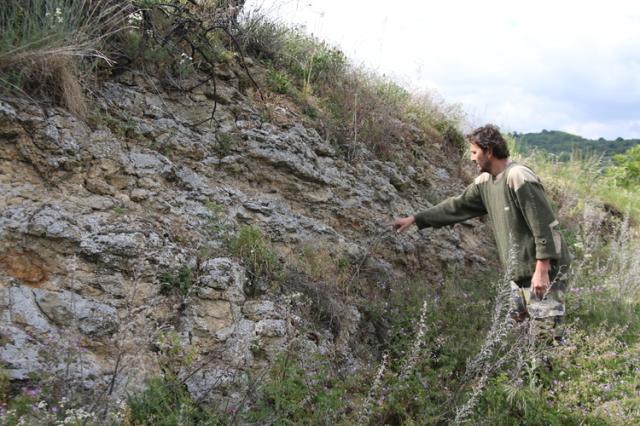 この地区特有のぺぺリット土壌