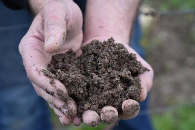 ふかふかとしてとても香のよい土