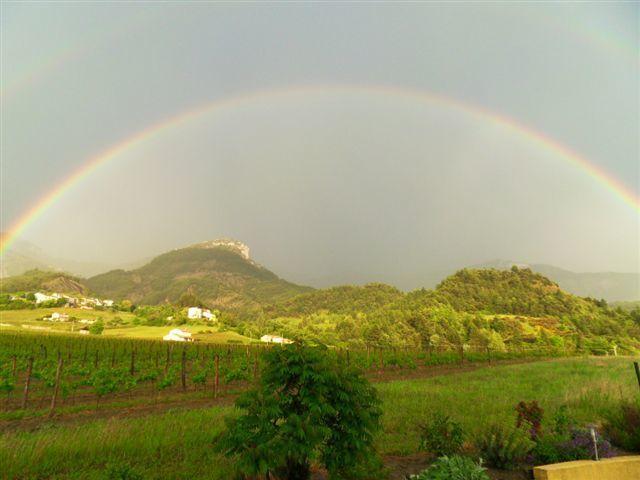 虹が出ています