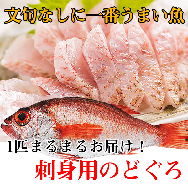 【のどぐろ通販】のどぐろ( 約380g~430g・刺身用)