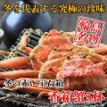 【カニ通販】香箱蟹(こうばこがに)5杯入※同梱不可・代金引換不可