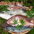 【鮮魚通販】能登・輪島の鮮魚3000円パック