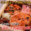 【カニ通販】訳あり香箱蟹(こうばこがに)10杯入※同梱不可・代金引換不可