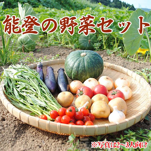 能登の野菜セット8種(2〜3人向け)