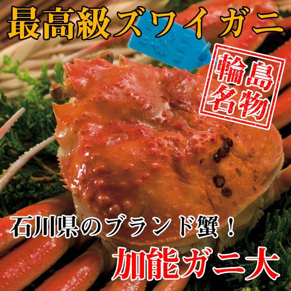 【カニ通販】ズワイガニ(加能ガニ)・大※同梱不可・代金引換不可