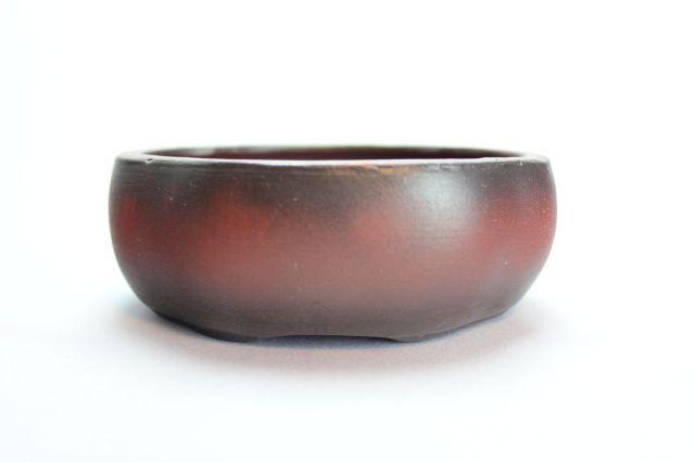 木瓜,黒吹,3.5号,中国鉢,植木鉢