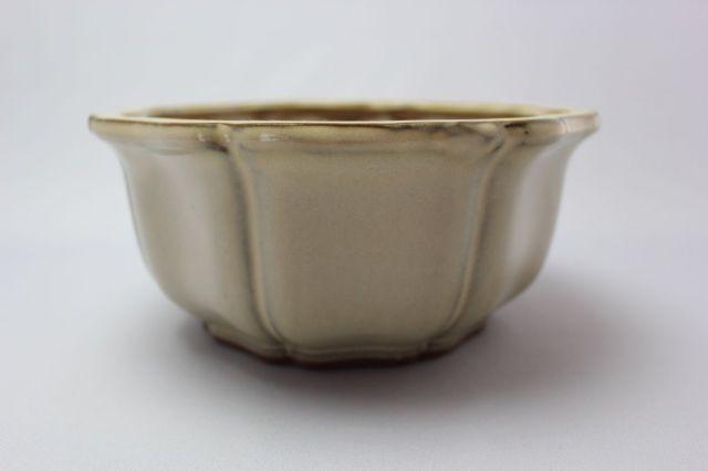 輪花外縁,クリーム,6号,中国鉢,植木鉢