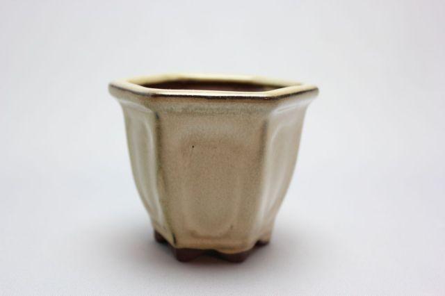 六方外縁額入,クリーム,2号,中国鉢,植木鉢