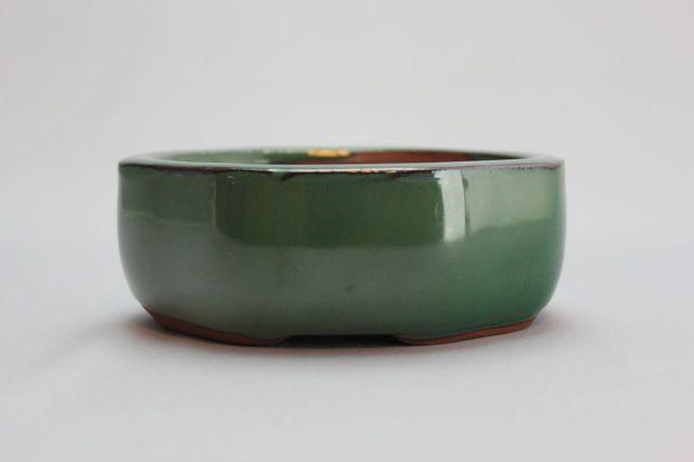 木瓜,織部,4号,中国鉢,植木鉢