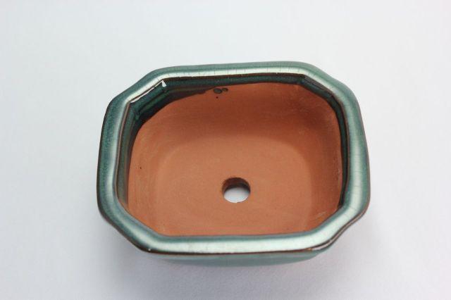 木瓜,織部,5号,中国鉢,植木鉢