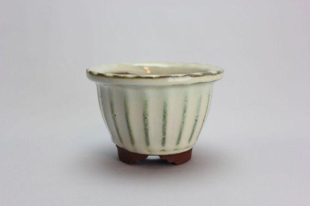 輪花中深段足,クリーム,4号,中国鉢,植木鉢