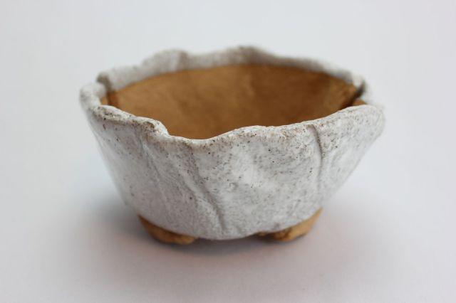 白ひねり,5号,信楽焼,植木鉢,盆栽鉢
