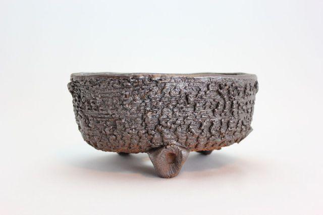小判中深,6号,信楽焼,植木鉢,盆栽鉢