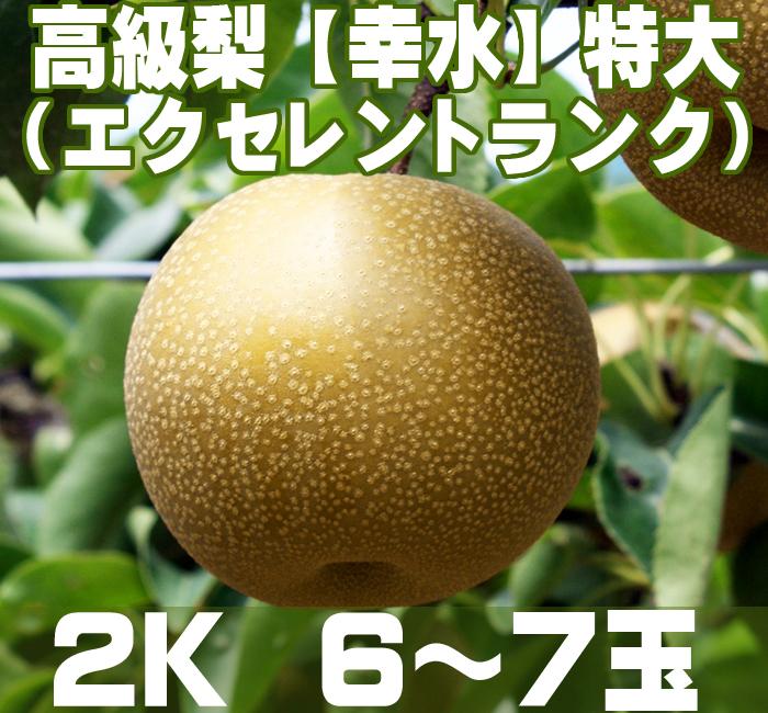 温室栽培のエクセレントランク【幸水】梨2K (6~7玉)