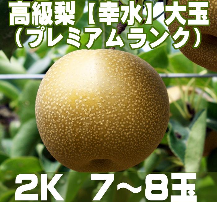 温室栽培のプレミアムランク【幸水】梨2K (7~8玉)